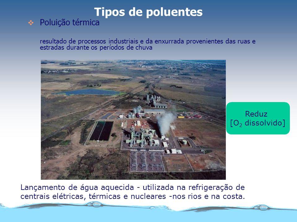 Tipos de poluentes Poluição térmica Reduz [O2 dissolvido]